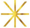 wrap star black logo gold star